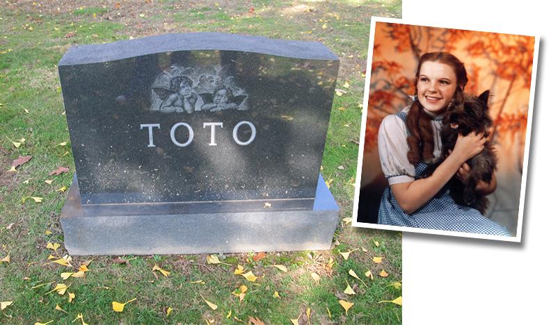 toto_grave